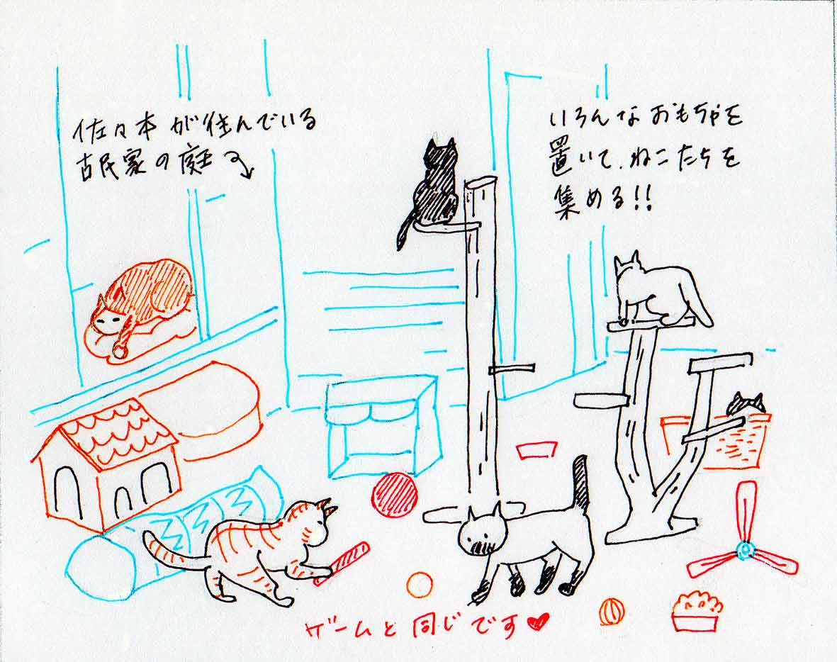 庭で遊ぶ猫